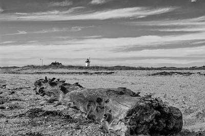 Lighthouse Photograph - Driftwood Log by Brian Caldwell