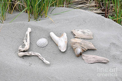 Photograph - Driftwood Love by Sarah Schroder