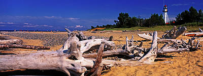 Lake Superior Lighthouse Photograph - Driftwood On Beach, Whitefish Point by Panoramic Images