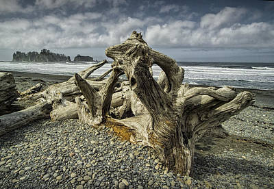 Driftwood On Rialto Beach In Olympic National Park No. 144 Art Print by Randall Nyhof