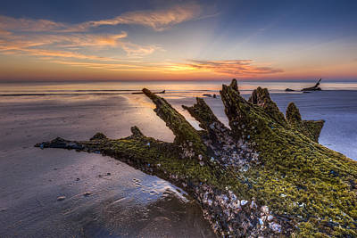 Driftwood On The Beach Art Print by Debra and Dave Vanderlaan