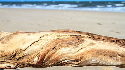 Photograph - Driftwood On The Beach by Peta Thames
