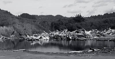 Photograph - Driftwood Pond by Lorraine Devon Wilke