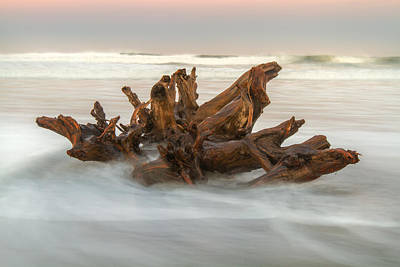 Art Print featuring the photograph Driftwood by Randy Wood