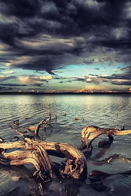 Deep Sky Photograph - Driftwood by Stelios Kleanthous