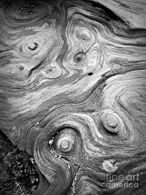 Photograph - Driftwood Swirls by Chalet Roome-Rigdon
