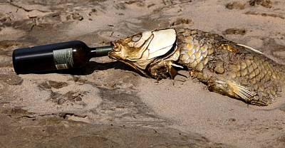 Photograph - Drink Like A Fish by Richard Engelbrecht