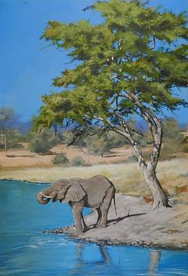 Painting - Drinking Elephant by Robert Teeling