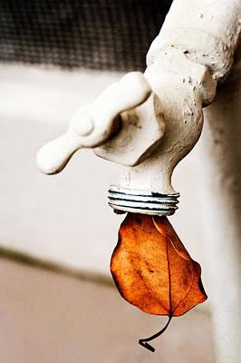 Drip Leaf Art Print by Bobbi Feasel