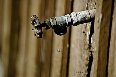 Photograph - Drip...drip...drip...drip by Trish Tritz