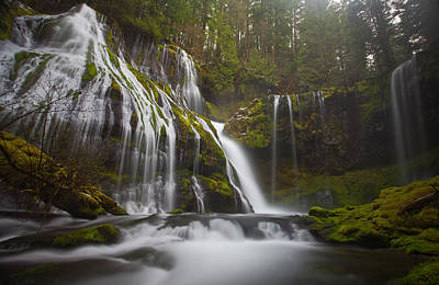 Northwest Landscapes Photograph - Dripping Wet by Darren  White