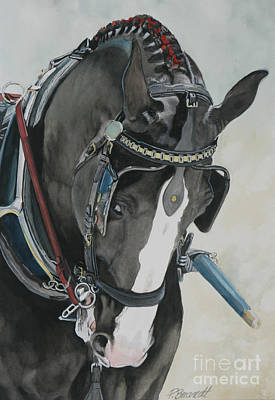 Shire Horse Painting - Driven by Patricia Brandt