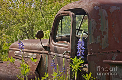 Photograph - Drivers Door by Karin Pinkham