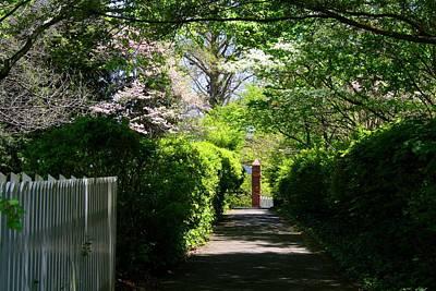 Photograph - Driveway by Kathryn Meyer