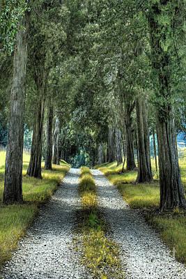 Gravel Road Digital Art - Driveway To Where by Sari Sauls