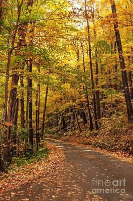 Driving Fall Mountain Roads. Art Print by Debbie Green