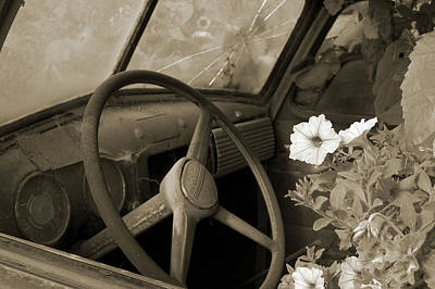 Driving Flowers Art Print