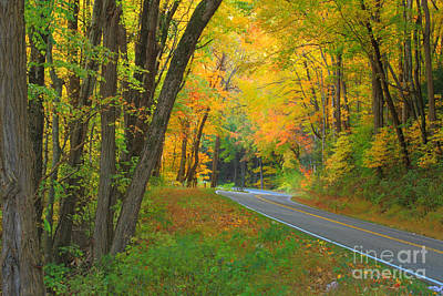 Driving Into Fall Art Print by Geraldine DeBoer