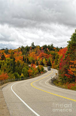 Photograph - Driving Through Algonquin Park In Fall by Les Palenik