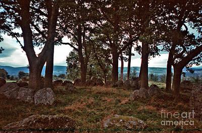 Photograph - Druid Circle Inverness Scotland by Pete Klinger