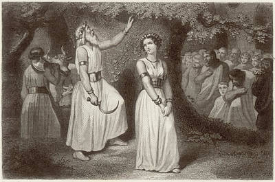 Fertility Symbols Wall Art - Drawing - Druids Gathering The Sacred Mistletoe by Mary Evans Picture Library