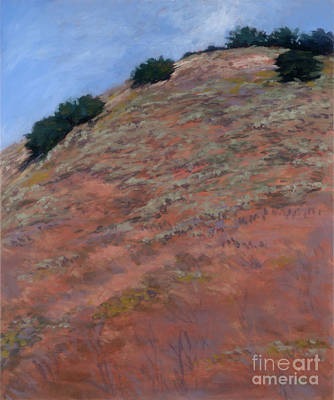 Drum Canyon - Late Spring-  1 Art Print