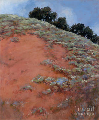 Drum Canyon - Late Spring-  2 Art Print