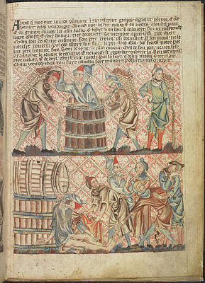 Drunkeness Of Noah Print by British Library