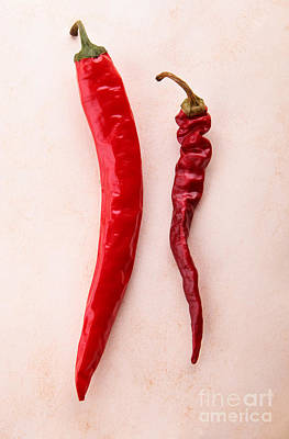Chillie Photograph - Dry Chili And Fresh Chili by Ekaterina Planina