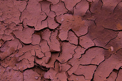 Photograph - Dry Cracked Earth by Garry Gay