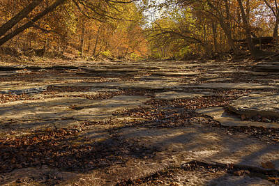 Photograph - Dry Creek by Jack R Perry