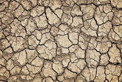 Photograph - Dry Earth by Elena Elisseeva