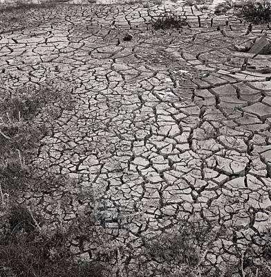 Dry Photograph - Dry Earth by Horst P. Horst