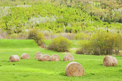 Maine Meadow Photograph - Dry Hay Bales In Spring Farm Field Maine by Keith Webber Jr