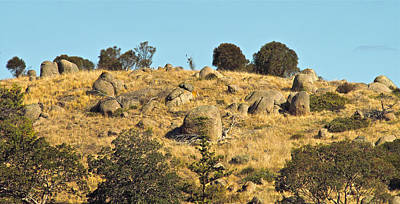 Photograph - Dry Hilltop - South Australia by Jocelyn Kahawai