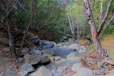 Hot Creek Photograph - Dry Matilija Creek by Heidi Smith