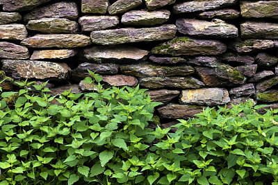 Photograph - Dry Stone Wall  by Fabrizio Troiani