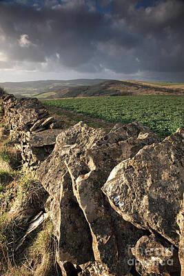 Dry Stone Wall View Print by Deborah Benbrook