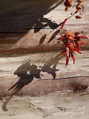 Photograph - Drying Chili Peppers by Jane Ford