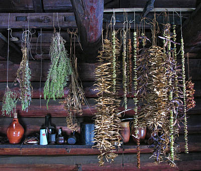 Drying Herbs And Vegetables In Williamsburg Art Print by Dave Mills