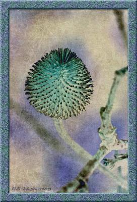 Dryweed Art Print by WB Johnston