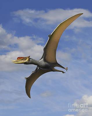 Prehistoric Digital Art - Dsungaripterus Weii, A Pterosaur That by Sergey Krasovskiy