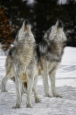 Photograph - Dual Howl by Wes and Dotty Weber