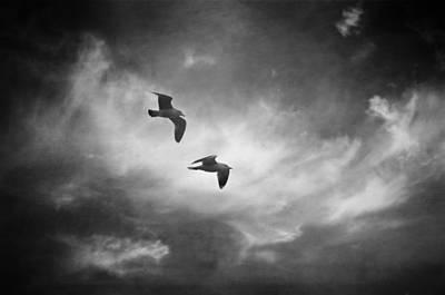 Best Ocean Photograph - Dual by Taylan Apukovska