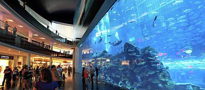 Dubai Aquarium Print by Babak Tafreshi