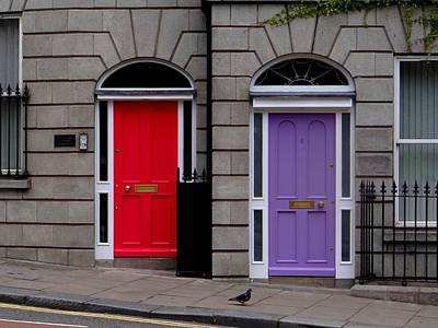 Photograph - Dublin Doors And Pigeon by Keith Stokes