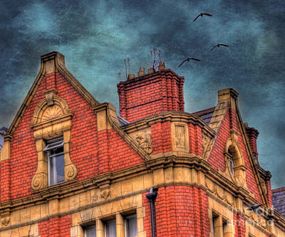 Dublin House Roof Top Art Print