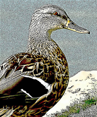 Mixed Media - Duck Art Tribal Mallard by Lesa Fine