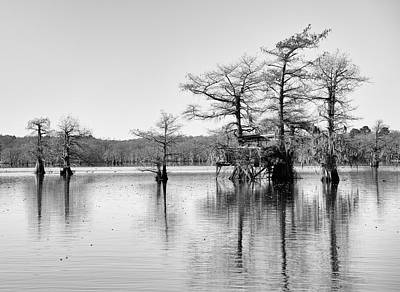 Photograph - Duck Blind On Caddo Lake by Mary Lee Dereske