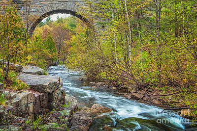 Photograph - Duck Brook Bridge In Acadia by Susan Cole Kelly